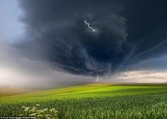 The forked lightening is visible in the heart of the cloud and cracking down to earth at the bottom