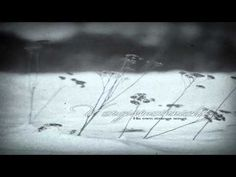 ▶ Vergissmeinnicht - His Own Strange Songs (Full Album) - YouTube