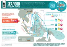 Where does your #seafood come from? #health #cooking #infographic