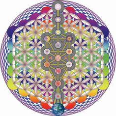 a Flor da Vida é considerada símbolo sagrado da geometria, contendo valor espiritual ancestral, a forma fundamental do espaço-tempo. Assim são os flocos de neve