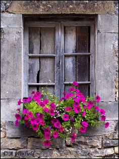 house flower boxes 669277194594851447 - Window surrounded by stone and window box of pink petunias Source by brigittebeguivi Window Box Flowers, Window Boxes, Window Sill, Flower Boxes, Cottage Windows, Garden Windows, Old Windows, Windows And Doors, Window Dressings