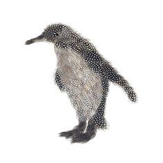 Chloe Gardner Penguin - Trowbridge Gallery
