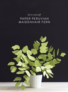 DIY: Paper Peruvian Maidenhair Fern by Corrie Hogg