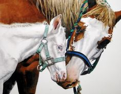 """Sweetie Pie and Ghost Writer"" Watercolor Kimberly Meuse Watercolor Paintings Of Animals, Watercolor Art, Oil Pastel Colours, Ghostwriter, Pinto Horses, Horse Artwork, Painted Pony, Most Beautiful Animals, Horse Drawings"