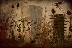Peter van de Lavoir, hedendaags landschap nat. Assignment photobond: nowadays landscape by petervandelavoir, via Flickr
