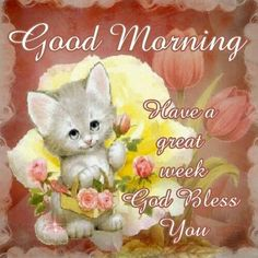 Good Morning blessings!