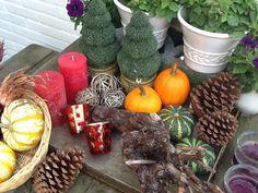 Mijn herfst tafel is weer klaar :)