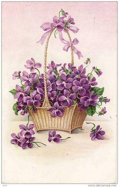 Vintage violets postcard: