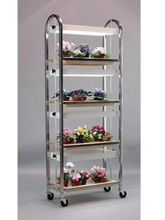 1000 Images About Plant Stand Indoors On Pinterest