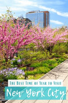 The Best Time of Year to Visit NYC Visit New York City, New York City Travel, New City, Melbourne, Sydney, Usa Travel Guide, Travel Usa, Travel Guides, Travel Tips