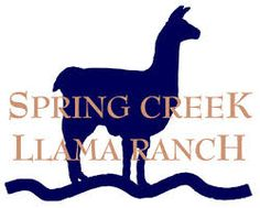 Image result for llamas for sale Llama Arts, Llamas, Art Logo, Ranch, Spring, Pictures, Image, Logos, Ideas