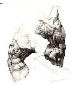 Иллюстрации из книг по анатомии. | 606 фотографій