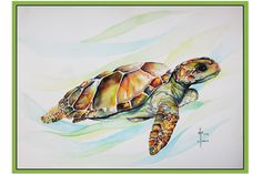"""3 Different Minions /& Turtles Canvas 24/""""x10/"""" On A Wooden Stretcher Frame,"""