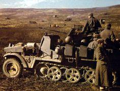 A German SdKfz 10/4 half-track with 20mm flak gun in the Terek region (Caucasus), alert for low-flying Soviet aircraft, autumn of 1942.