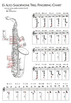 Factual Saxophone Chord Chart Saxophone Keys Alto Sax Fingering Flute Trill Chart Pdf Trumpet High Note Finger Charts Saxophone Alto Notes Saxophone Notes, Saxophone Music, Music Chords, Tenor Sax, Piano Music, Partition Saxophone Alto, Partitions Saxophone, Alto Saxophone Fingering Chart, Popular Piano Sheet Music
