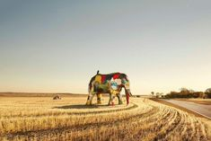 A life-sized elephant made from the parts of crashed cars has been erected as part of a campaign to get people talking about high road fatality rates in Western Australia's country areas.  The brightly coloured sculpture, currently in a wheat field on the outskirts of the Wheatbelt town of Northam, is being moved around to different towns in the region by the RAC WA.