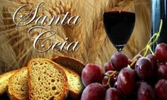 O vinho no tempo do novo testamento
