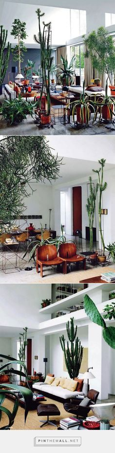 Home of Maurizio Zucchi | Italy. - Yellowtrace - created via http://pinthemall.net