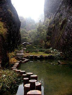 Da Hong Pao Tea Farm in Wuyishan, China
