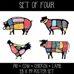 For the person who's into all the animals, or just can't decide which poster to get, why not get them all, at a discount?   This listing is for a set of FOUR 13 x19 posters of my original gouache and acrylic paintings - one cow, pig, chicken, and lamb. I *extensively* researched retails cuts of meat to fully flesh out what primal cut part of the animal they come from. The result is a both a highly accurate and informative diagram, as well as a bold and colorful piece of art. I've even had…