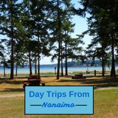 Day Trips From Nanaimo Buy Domain, Best Investments, Day Trips, Investing, Canada, Stuff To Buy