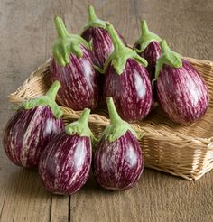 Browse our selection of eggplant varieties, selected superior flavor, vigor, and appearance. Our eggplant seeds are guaranteed. Eggplant Varieties, Eggplant Seeds, Vegetables For Babies, Veggies, Raw Vegetables, Health And Wellness, Health Tips, Health Foods, Happy Pregnancy