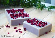 This recipe for rose-geranium soap uses alkanet root to tint the soap a natural purple color and essential oil and rose petals for scent and decoration.