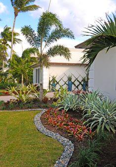Award winning Pamela Crawford & Associates is a landscape design company in Boca Raton offering custom pool & yard landscaping installs & construction. Florida Landscaping, Florida Gardening, Tropical Landscaping, Front Yard Landscaping, Backyard Landscaping, Landscaping Ideas, Palm Trees Landscaping, Inexpensive Landscaping, Modern Backyard