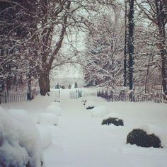 Winter wonderland @ obermayerhofen Winterthur, Parks, Das Hotel, Location, Winter Wonderland, Winter Outfits, Snow, Outdoor, Dress Wedding