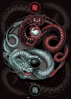 Yin Yang Guardians - Dragons