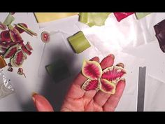 013-Polymer clay tutorial - Coleus leaves cane