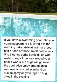 Peppermint oil keeps bugs away Above Ground Pool, In Ground Pools, Peppermint Spray, Keep Bugs Away, Pool Hacks, Pool Care, My Pool, Pool Fun, Pool Maintenance