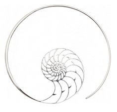 Eternal at Maya Jewelry ~ In Silver, even better! Spiral nautilus shell hoop earrings. Love these!