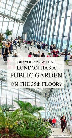 Fancy a free indoor garden on the 35th floor? With a spectacular view over central London? Of course you do! Come along to the Sky Garden in London! Direct Link: http://thelondonsecret.com/sky-garden-london/ #free #thingstodoin #London