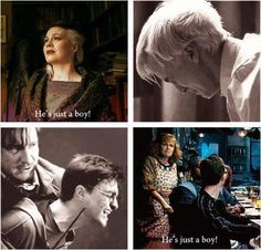 the role of mothers in hp