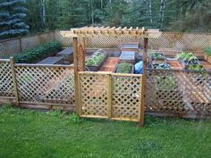 Raised Bed Garden We should do this in my yard this year and we can all take stuff from it!!! @Beth Anne @Mel Altekruse