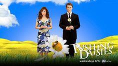 Pushing Daisies 11x17 TV Poster (2007)