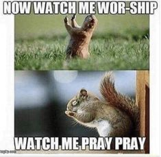 Christian Funny Pictures - A time to laugh Church Memes, Church Humor, Catholic Memes, Funny Christian Memes, Christian Humor, Christian Life, Cute Jokes, Lol, Have A Laugh