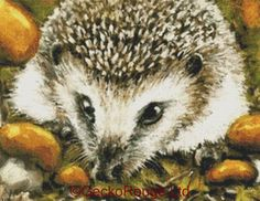Hedgehog and Yummy Mushrooms Cross Stitch Kit By Tanya Bond counted Cross Stitch Kit by GeckoRouge on Etsy https://www.etsy.com/ie/listing/230770436/hedgehog-and-yummy-mushrooms-cross
