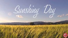 Sunshiny Day - Royalty Free Music by CLS Media (audiojungle.net)