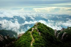 """Tailaoshan Mountain located in Fuding, Fujian province is a place famous for its scenery or historical relics. An ancient Chinese legend told during the time of Xuanyuan and Huangdi Emperors' reign, a celestial being of Taoists named as Rong Chengzi used to inhabit here and during the time of Yao Emperor's reign , there was a young girl who spent all day growing orchid and tea trees here and  teach local people how to make """"White Tea""""."""