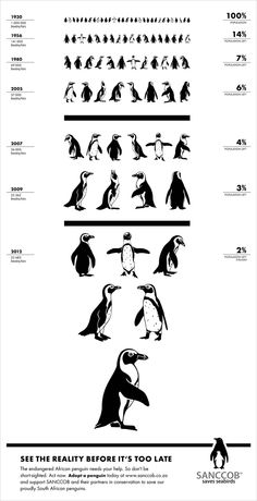 Wiinterrr's Day: One last reminder on #PenguinAwarenessDay 2015--a #Penguin Eye Chart