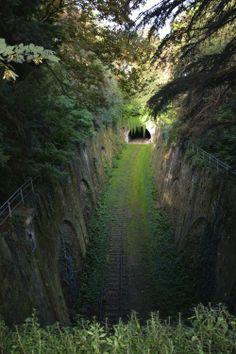 ©Vincent Brun Hannay Paris Parc Montsouris Have A Nice Trip, Garden Gates, Paris Travel, Pathways, Paris France, Parisian, Cool Photos, Places To Go, Country Roads