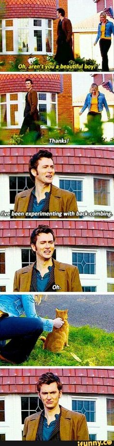 Is it weird that with seeing so much stuff about David Tennant I am slowly falling in love with David Tennant<<<that's just the doctor who effect everyone falls in love with the doctors Tardis, Fandoms Unite, Dr Who, Sherlock, Supernatural, E Mc2, My Sun And Stars, Out Of Touch, Tenth Doctor