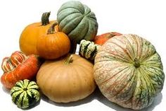 Pumpkin (and winter squash) are cool and sweet. They dispel dampness, reduce…