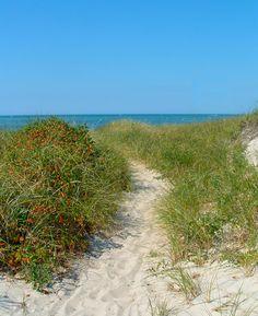 Ten Best Nature Walks on Cape Cod | CapeCodTravel.com