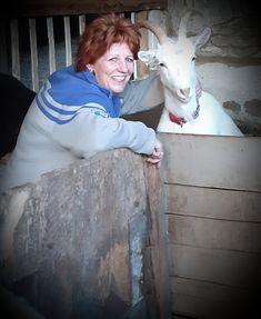 Termelői profil | Microker Goats, Profile, Animals, User Profile, Animales, Animaux, Animais, Goat, Animal