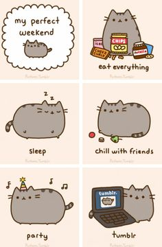Pusheen's perfect weekend, I think everyone would agree with her on this!