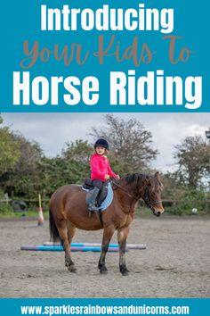 Western Riding, Trail Riding, Horse Riding, Horseback Riding Lessons, Horse Training Tips, Pony Rides, Baby Horses, Horse World, Horse Care