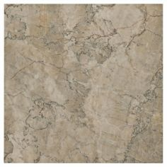 Dynasty Cream Marble Tile Model: 921104741 Size: 12in. x 12in. Floor & Decor
